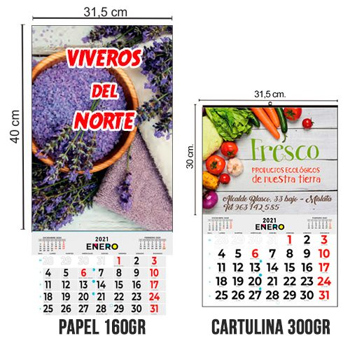 Calendario Mensual todo color